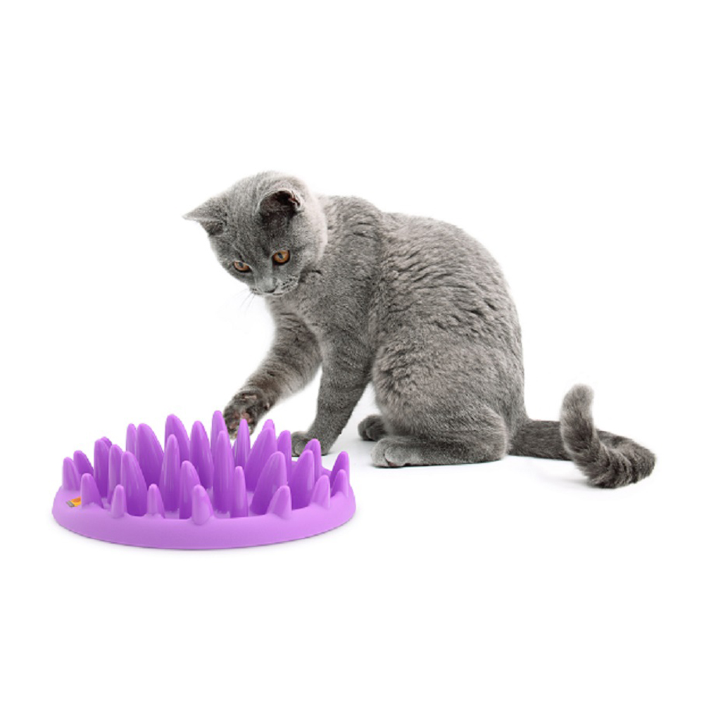 Company of Animals - Interactive Feeder for Cats