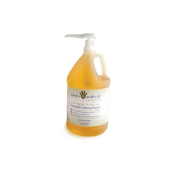 Cain & Able Concentrated Shampoo 1 gallon