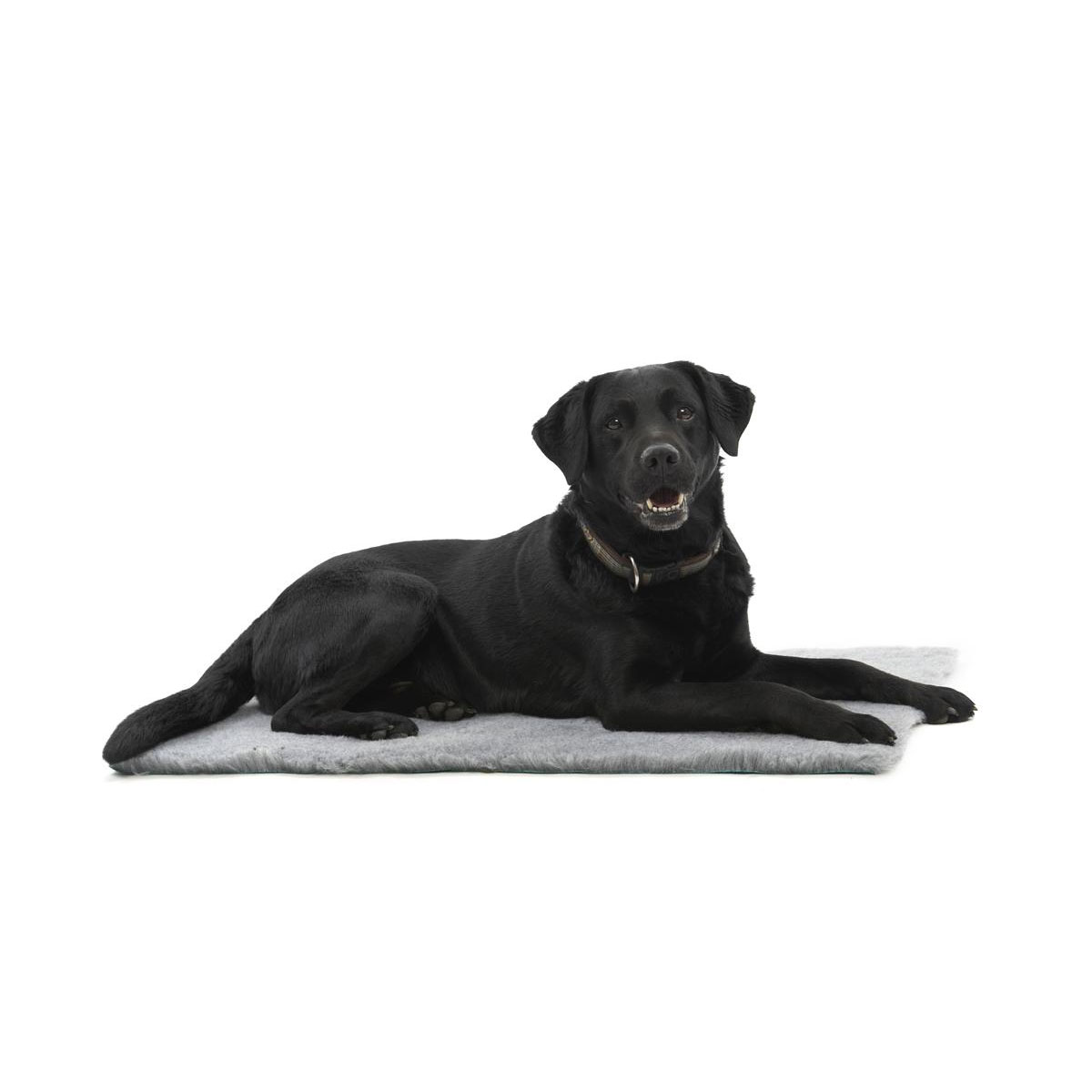KRUUSE Vet Bed, anti-slip