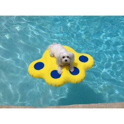 PAW - Inflatable Raft