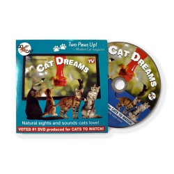 Steve Cantin - Cat dreams DVD for Cats