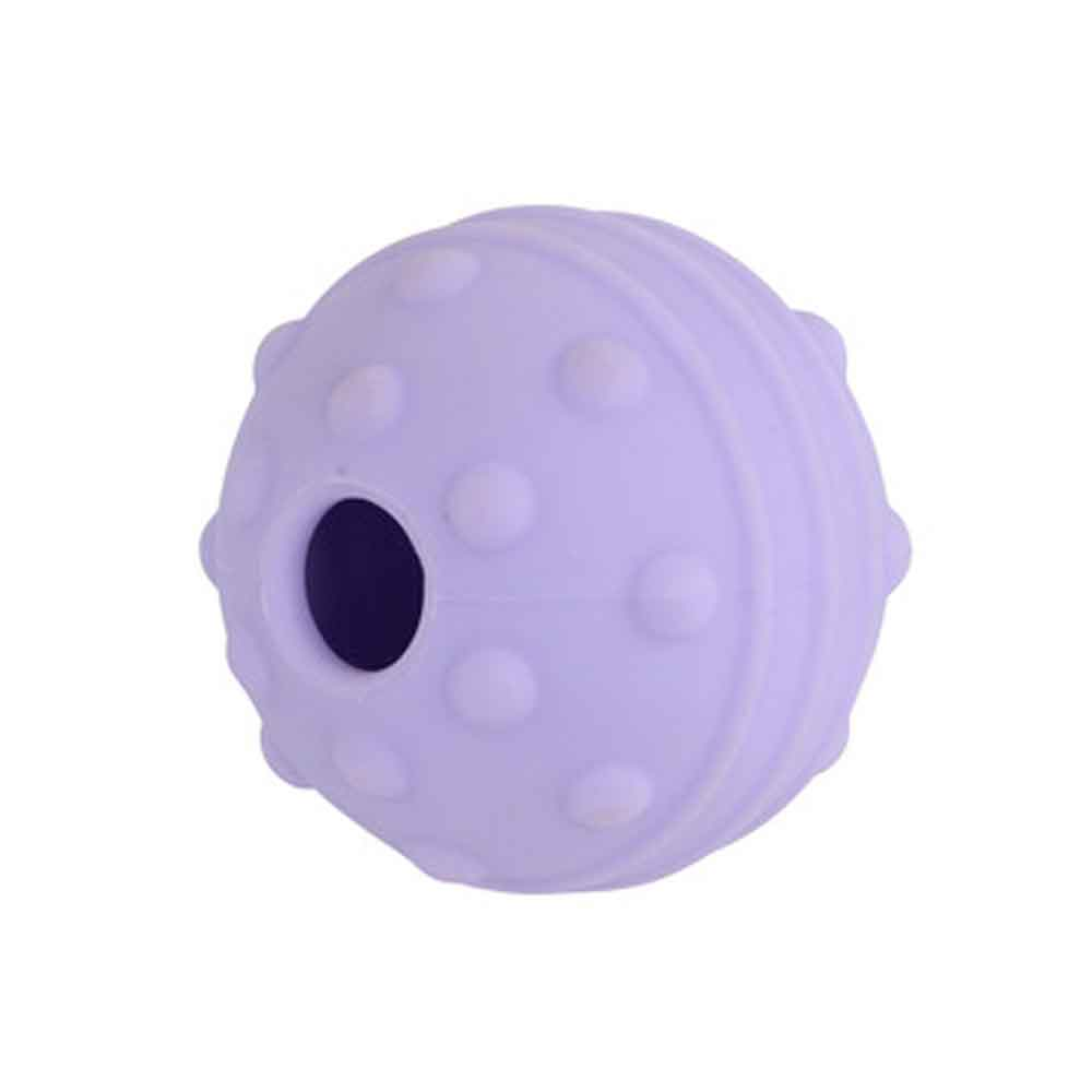 Buster Flex Ball Dog Toy